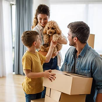 birmingham family geting ready for a move with pets